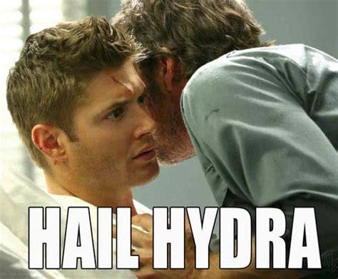 The Most Hilarious Hail Hydra Memes: You Can Try That