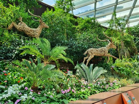 Singapur Tag 2 - Flower Dome @ Gardens at the Bay - Travel