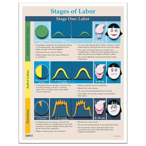 Stages Of Labor Educational Tear Pad | Childbirth Graphics
